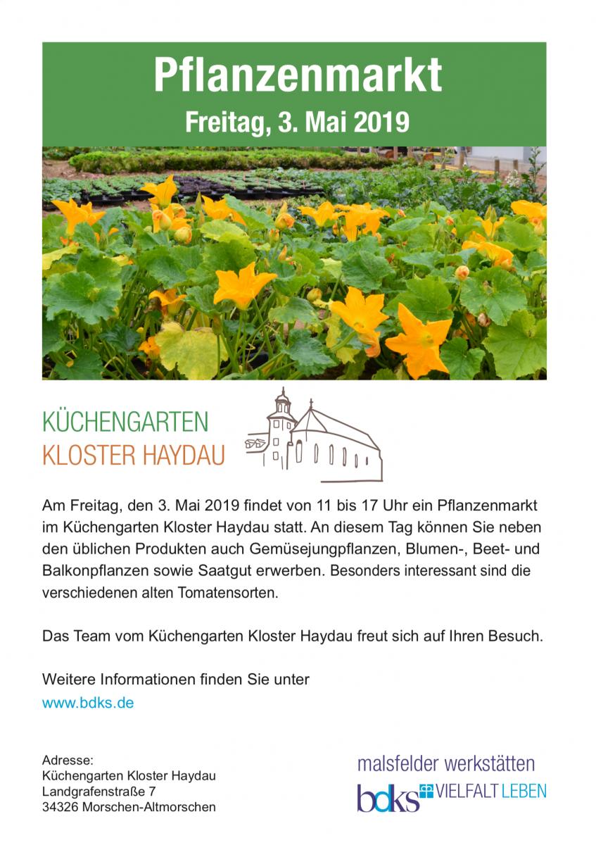 Pflanzenmarkt im Küchengarten Kloster Haydau