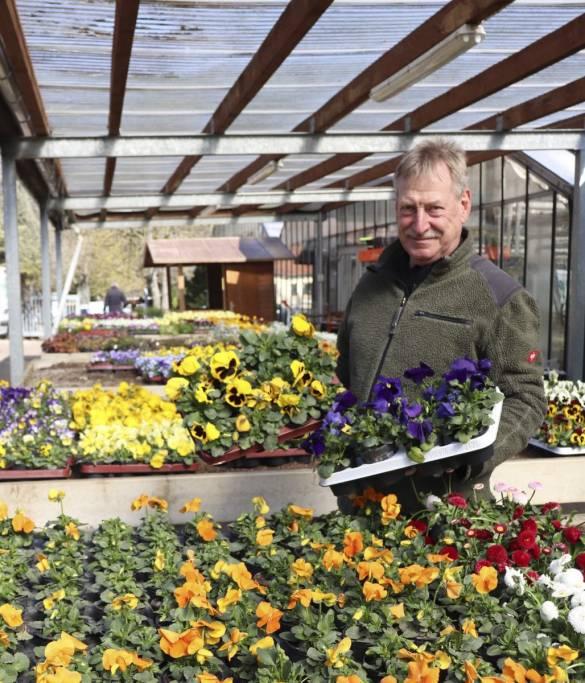 Frühling zum Mitnehmen: Gisbert Stollburges präsentiert eine große Auswahl an Frühlingsbumen Foto: bdks